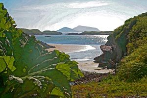 Deenish and Scariff Islands in Derrynane
