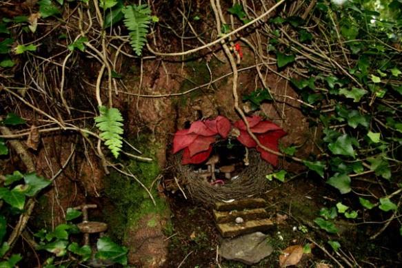 A cosy fairy house