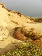 storm damage to dunes in kerry