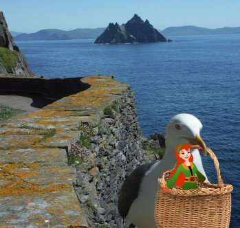 Fairies on Skellig MIchael